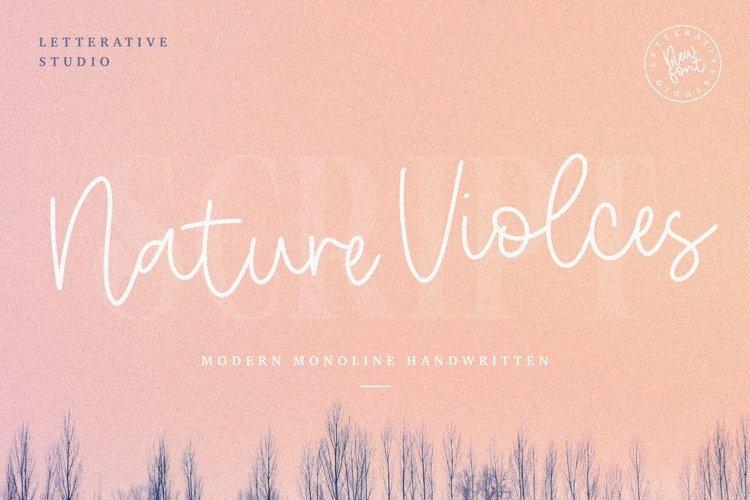 Nature Violces Modern Monoline Handwritten Font example image 1