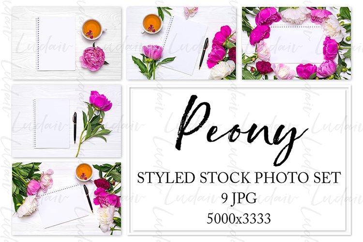 Peony. Styled stock photo set. example image 1
