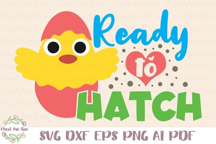 Ready To Hatch SVG Cut File