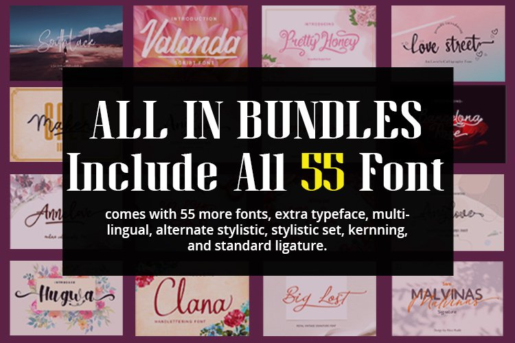 All In Bundles || Include 55 Font example image 1
