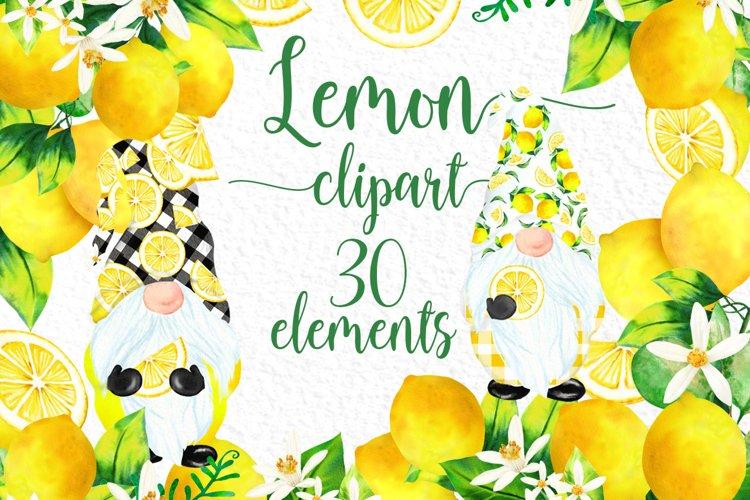 Lemon clipart Citrus clipart Cute Gnomes Watercolour lemons