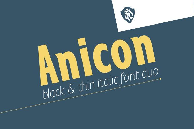 Anicon Black&Thin italic example image 1