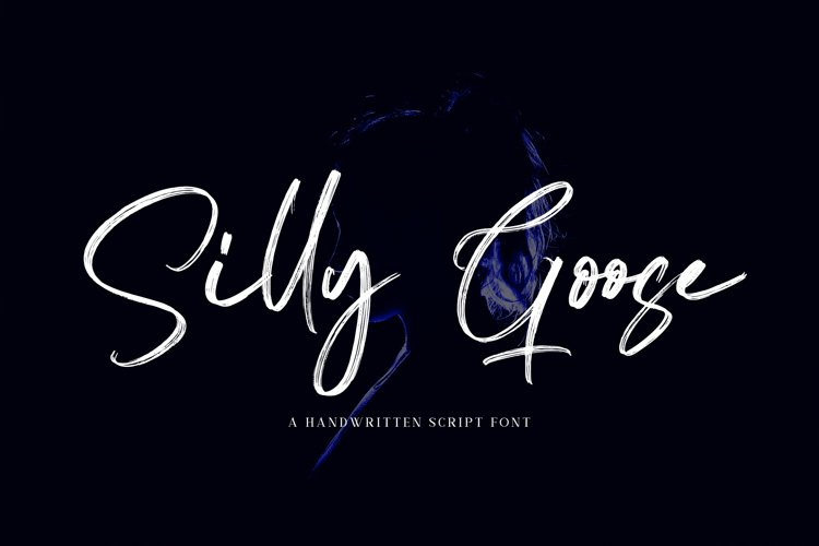 Silly Goose - Handwritten Font example image 1