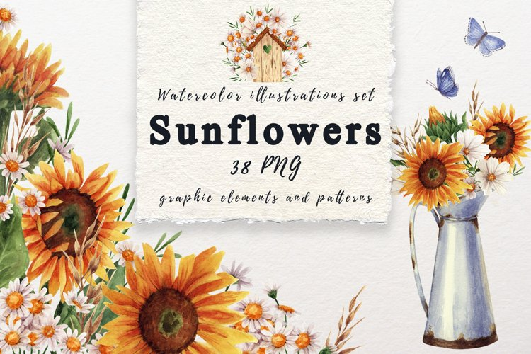 Sunflowers and daisies watercolor clipart