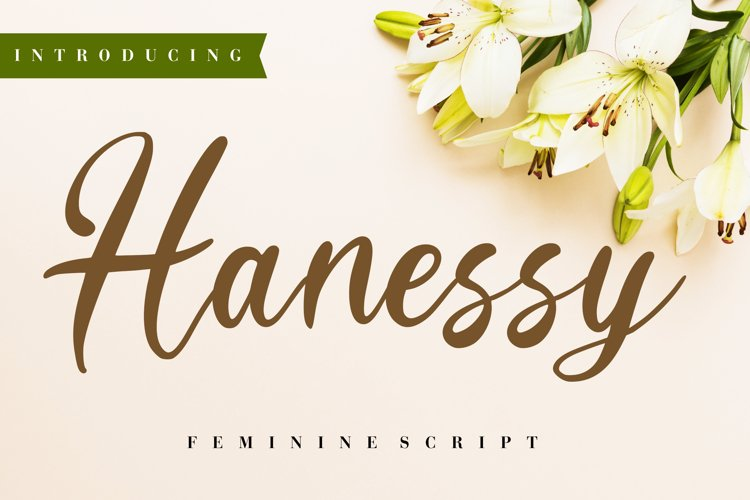 Hanessy Feminine Script example image 1