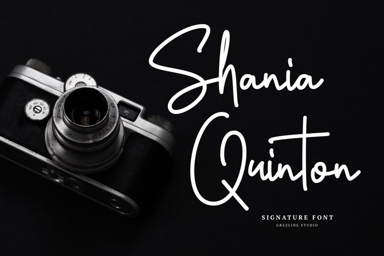 Shania Quinton Font example image 1