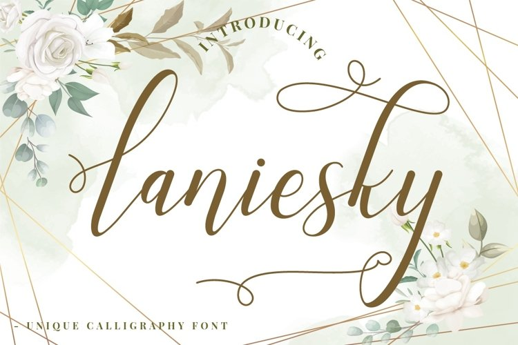 Laniesky - Calligraphy Font example image 1