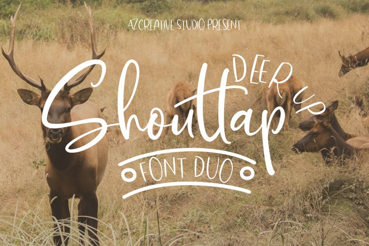DeerUp Shouttap Font Duo - With Swashes example image 1