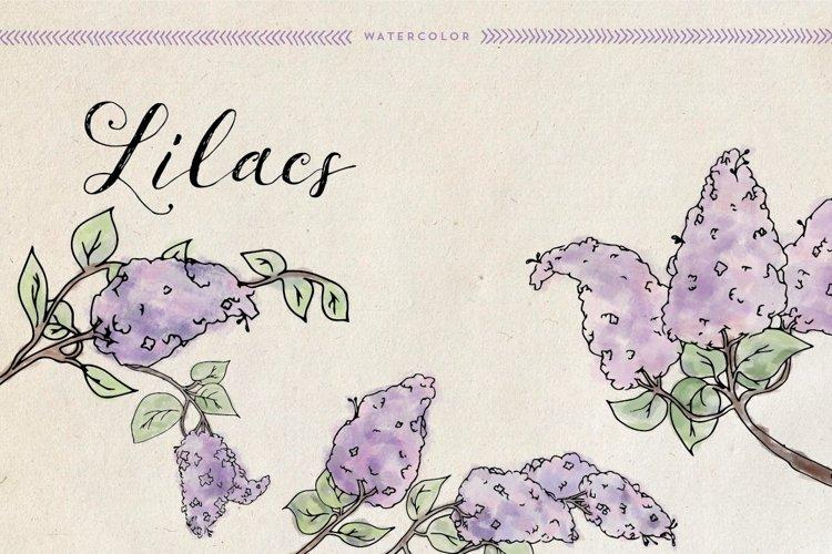 Watercolor Lilacs example image 1