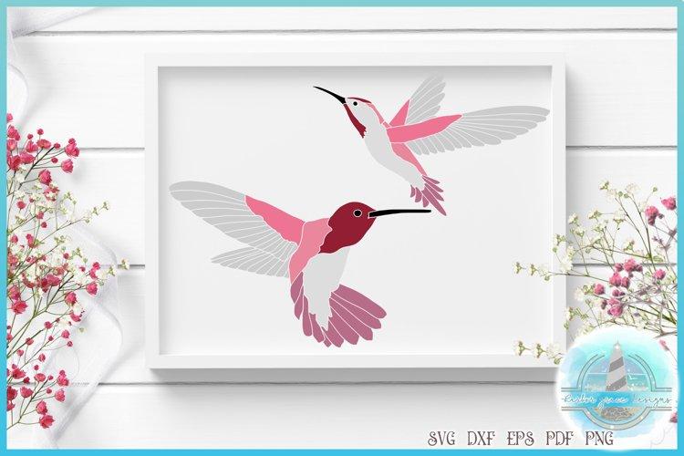 Hummingbird SVG   Humming Bird Cut File   Bird SVG example image 1
