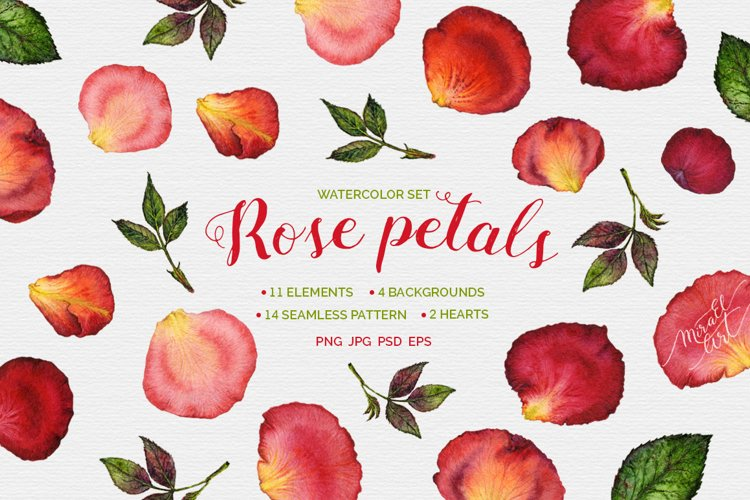 Floral watercolor rose petals example image 1