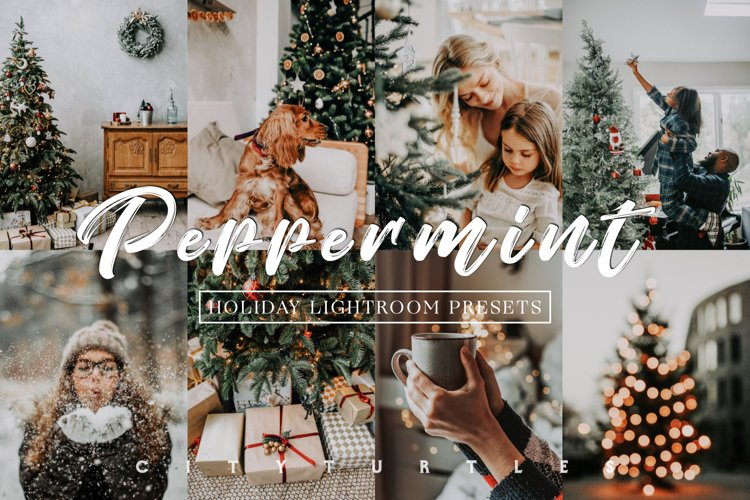 Moody Holiday PEPPERMINT Winter Lightroom Presets example image 1