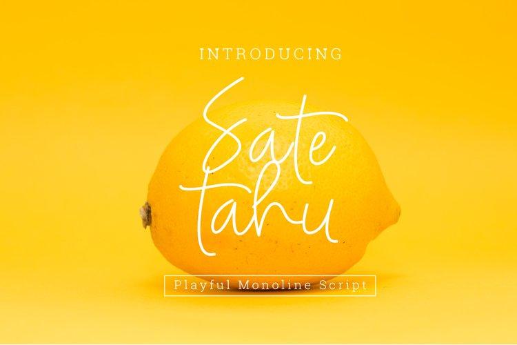 Sate tahu Signature Font Script example image 1