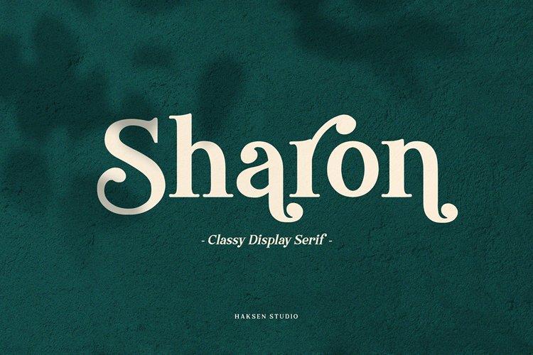 Sharon - Futuristic Serif example image 1