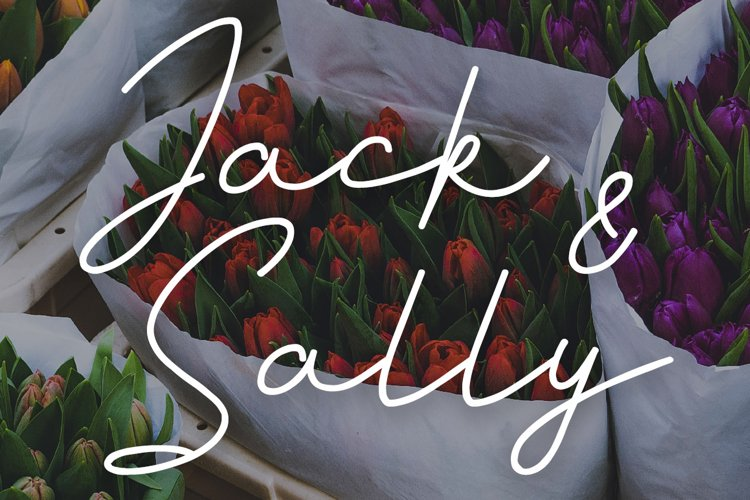 Jack And Sally Typeface example image 1