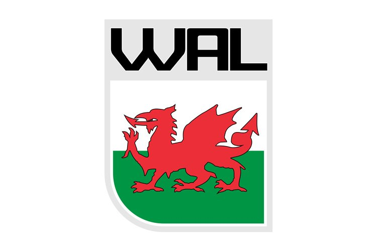 Flag of Wales icon example image 1