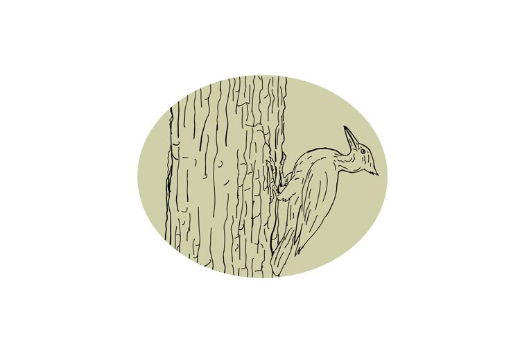 Woodpecker Pecking Tree Drawing example image 1