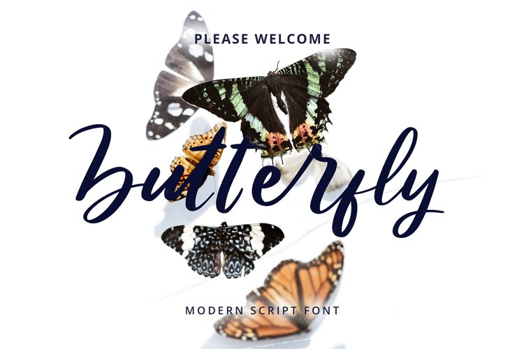 Butterfly Modern Script Font example image 1