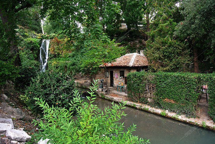 Picturesque parks of Bulgaria. Many types of vegetation