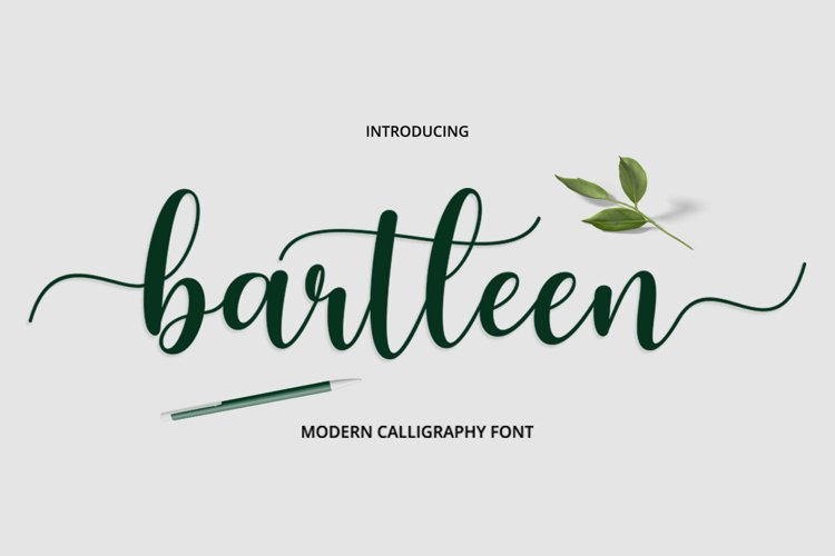 Bartleen Font Duo example image 1