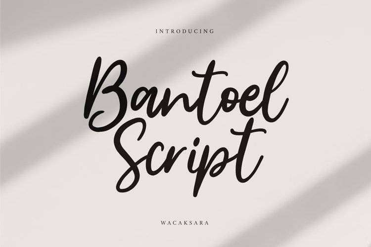 Bantoel Script example image 1