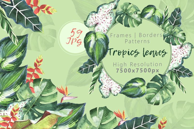 Tropics leaves JPG watercolor set example image 1