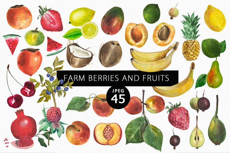 Farm berries & fruits example image 1