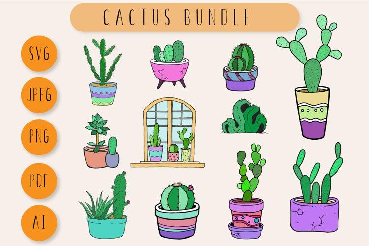 Cactus Bundle example