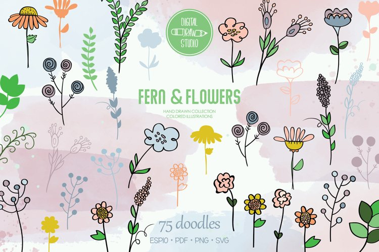Meadow Ferns & Wild Flowers | Color Hand Drawn Leaves, Plant example image 1