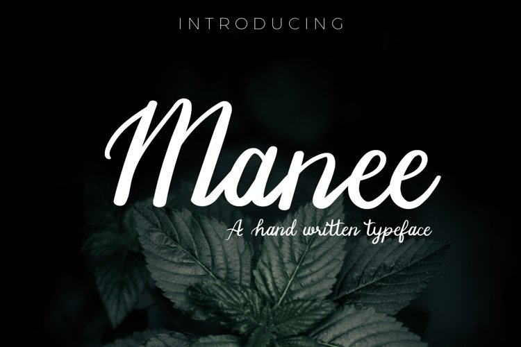 Manee Handwritten Typeface example image 1