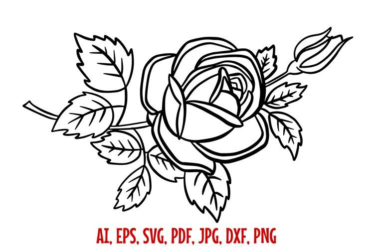 Rose Line Art Illustration SVG etc