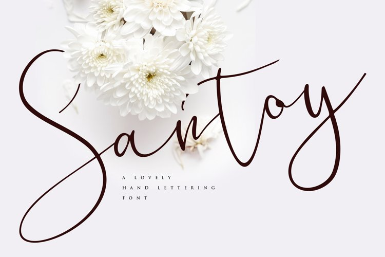 Santoy | Hand Lettering Font example image 1