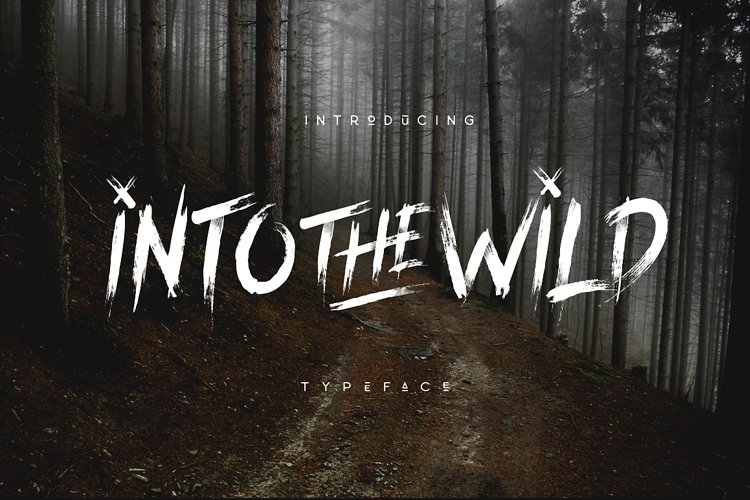 Into The Wild Brush Typeface example image 1