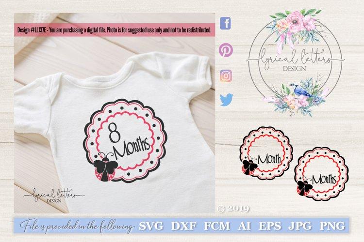Birth Months Badges SVG DXF FCM LL137E