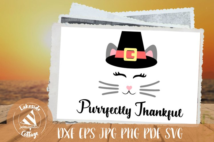 Purrfectly Thankful Cat in Pilgrim Hat Thanksgiving SVG example image 1