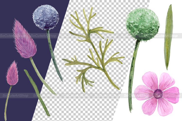 Watercolor Wildflower PNG Summer clipart, Floral bouquet png example 3