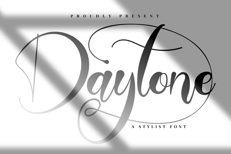 Daytone | Stylist Script Font example image 1