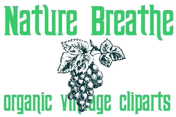 Nature Breathe example image 1
