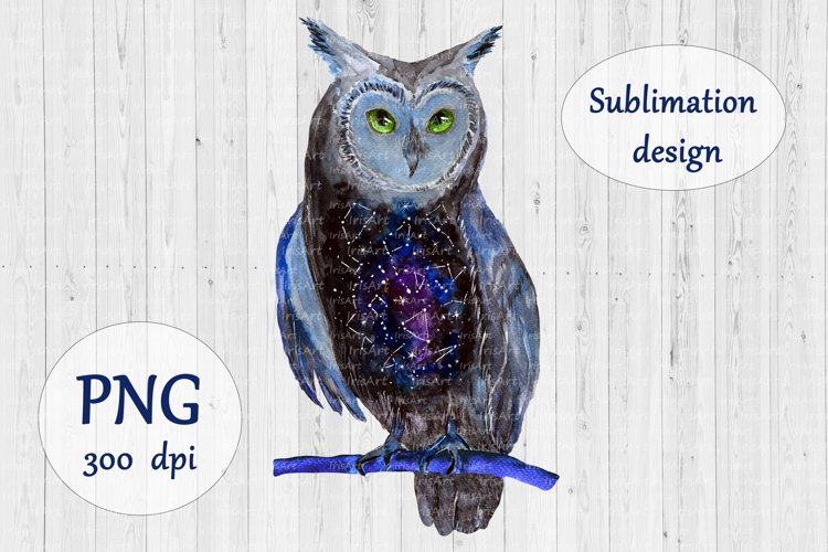 Galaxy Owl Sublimation Design - Watercolor Bird PNG example image 1