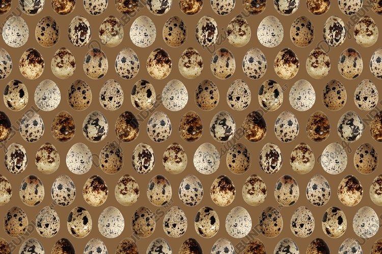 Quail eggs bird food kitchen photo seamless pattern texture