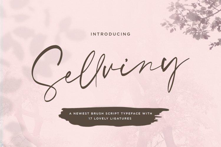Sellviny - Handwritten Font example image 1