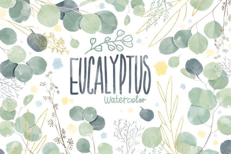 Watercolor Eucalyptus Leaves Clipart. Eucalyptus clipart.
