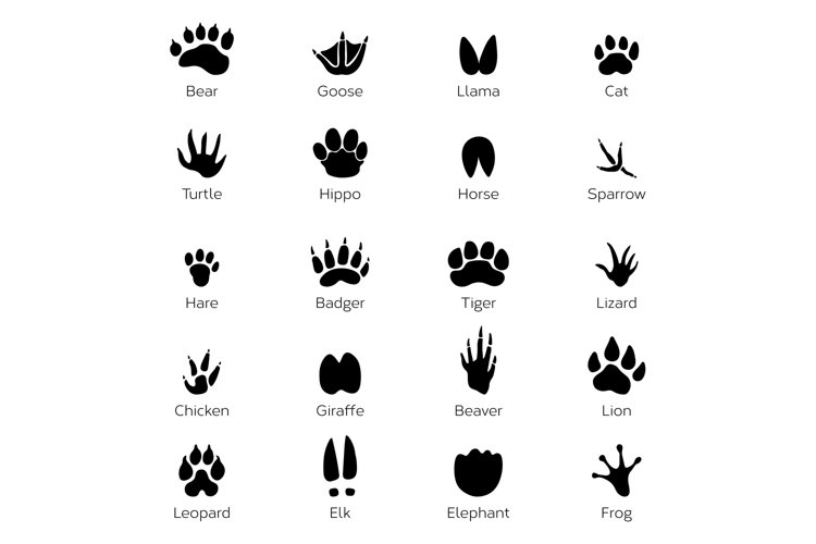 Different footprints of birds and animals. Vector monochrome example image 1