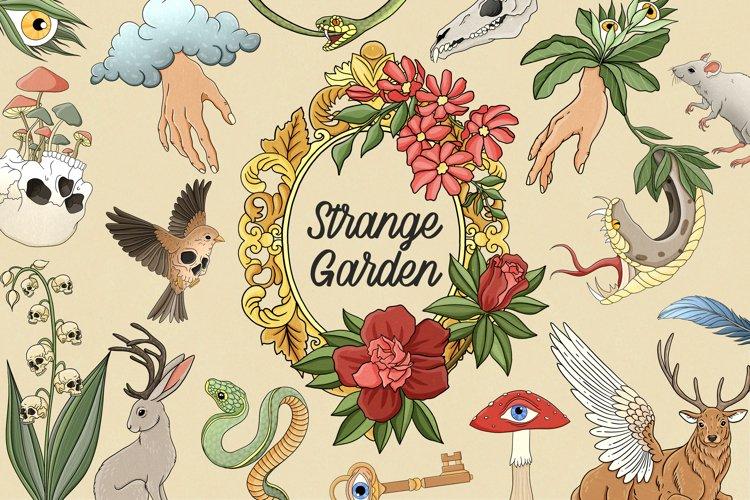 Strange garden clipart, Occult clipart, witchcraft clipart