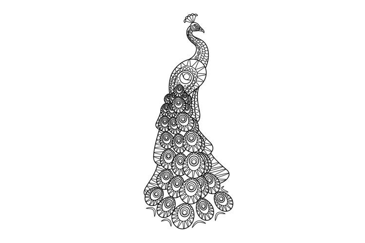 Hand drawn Peacock example image 1