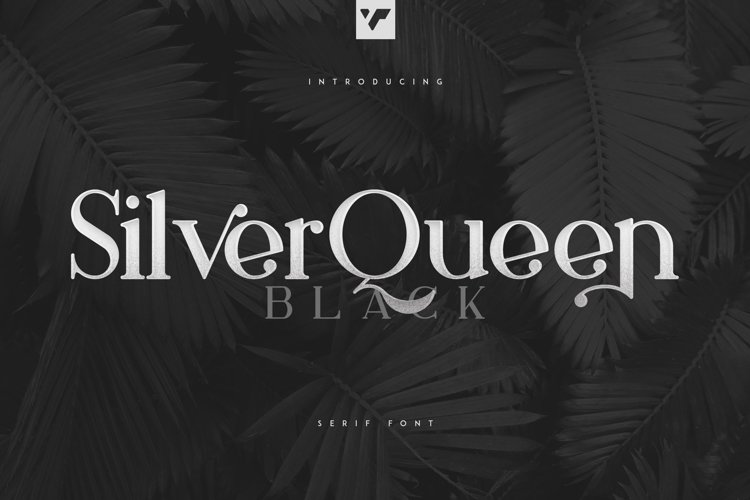 Silver Queen Serif Black example image 1