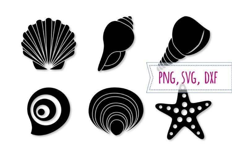 Shell svg set. Starfish svg. Seashell clipart, beach