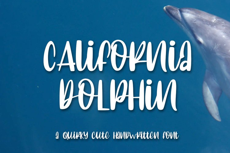 California Dolphin Quirky Handwritten example image 1