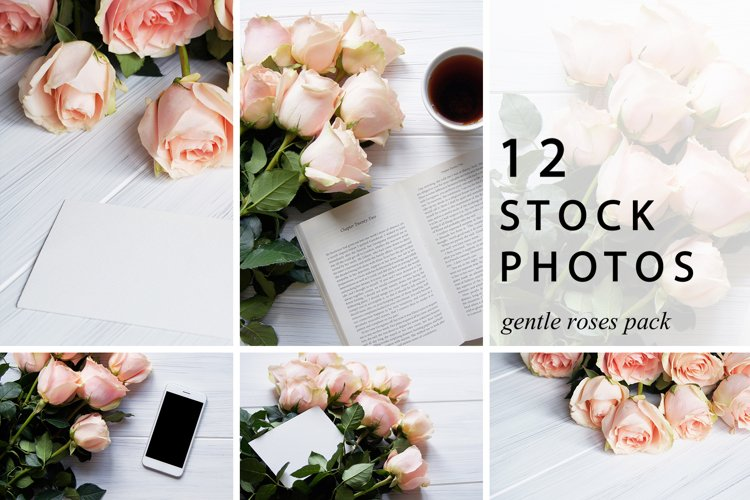 Gentle Roses Stock Photos Pack example image 1