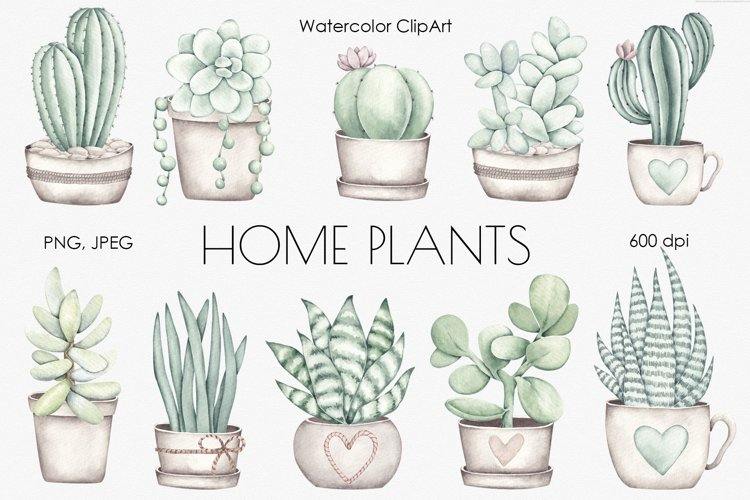 """Watercolor ClipArt """"Home Plants"""" example image 1"""